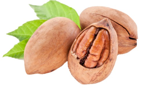image of pecans called the healthy nut!